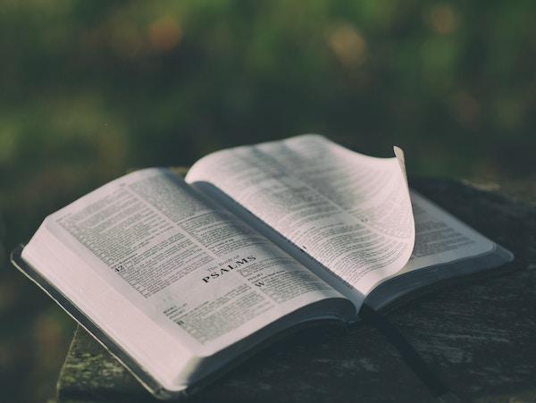 Praying the Psalms - Soul Shepherding