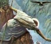 Shepherd rescues sheep