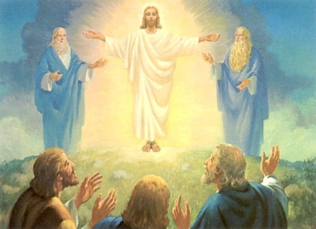 The Fellowship of the Transfigured Face (Holy Obedience ...