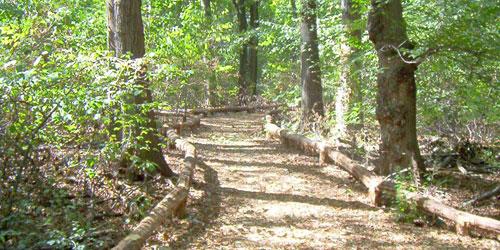 trail-prayer-walk
