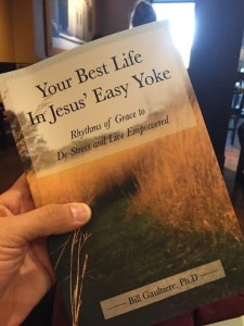 Your Best Life In Jesus' Easy Yoke Book
